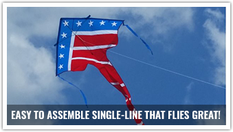 Easy to assemble and fly, the best flier delta kite will get you airborne in no time.