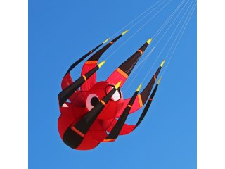 ITW Flying Spider Kite Line Laundry
