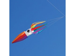 ITW 11-ft Flying Squid Kite Line Laundry (Rainbow)