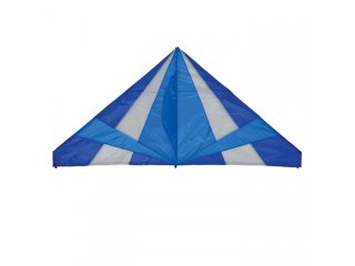 70 in. Delta Kite (Cool)