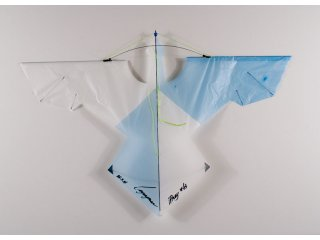 iPrey Indoor Kite (Blue Fusion)