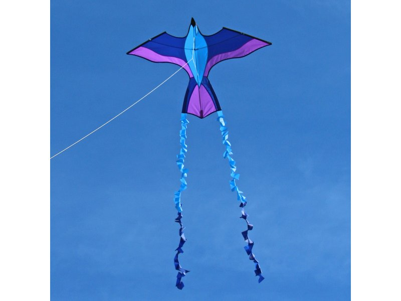 ITW Tropical Parrot Kite (Blue/Purple)
