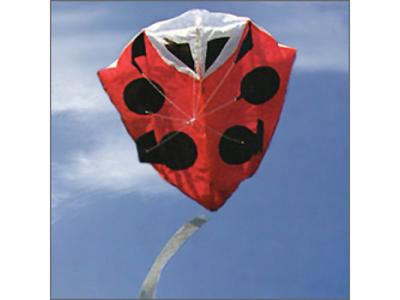 New Tech Ladybug Foil Kite